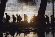 Incompliment flagrant en l'acollida als refugiats