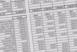 La Comissió d'Economia presenta els números